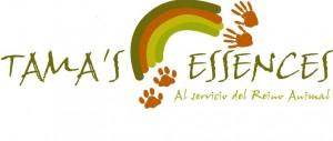 Logo Tammas